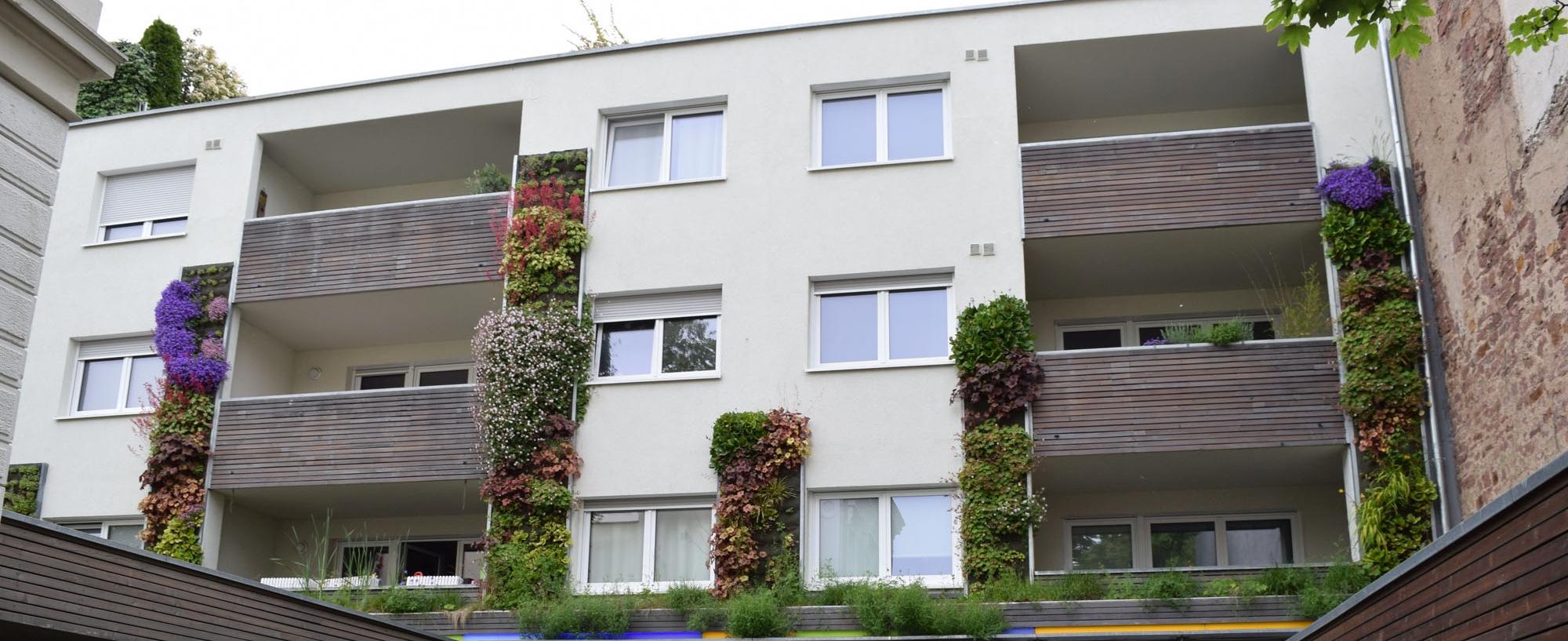 _begruenter Innenhof